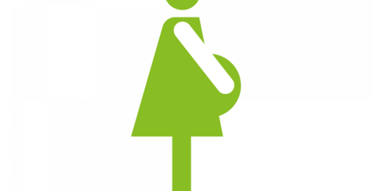 Pregnant lady graphic